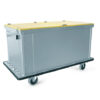 Conf-TRH1180-Trolley1